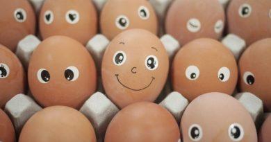 Sve što niste znali o jajima, jednoj od najzdravijih namirnica na svijetu